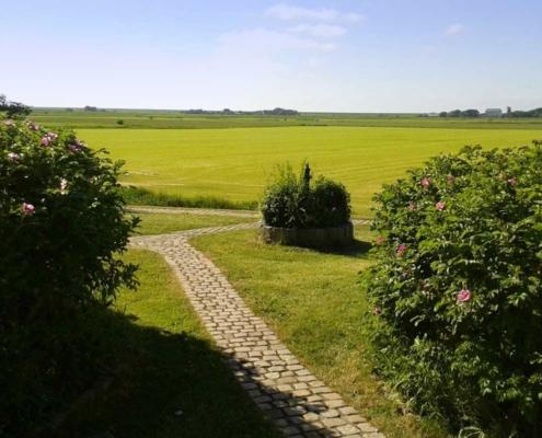 Foto Silberhof Blick auf die Mühle